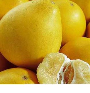 春季清脂柚子减肥法越吃越瘦